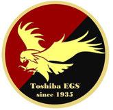 Toshiba EGS